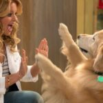 'Fuller House' Dog Cosmo Has Died Following Surgery