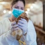 First-Ever Human Cases of H5N8 Bird Flu Detected in Russia
