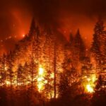 Wildfires Spur Unbelievably High Temperatures in Northwestern Russia